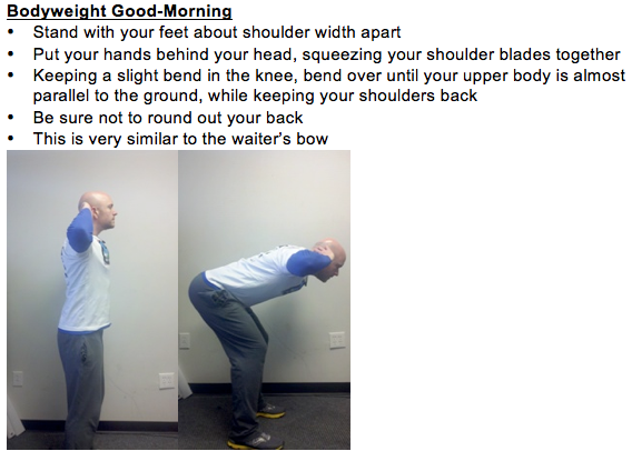 3 Bodyweight Hamstring Exercises