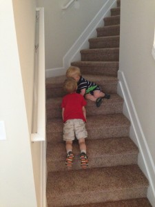 Champ and Deakan playing around on the new stairs.
